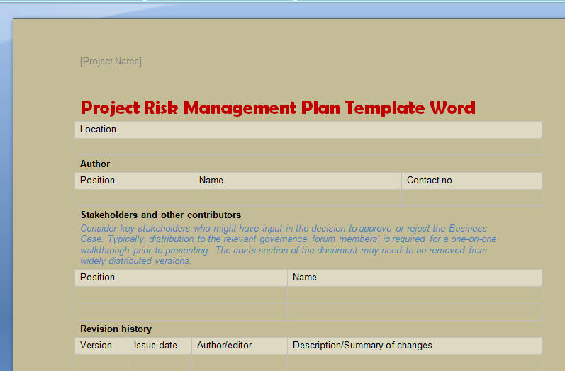 project risk management plan template word
