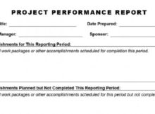Project Performance Report Template